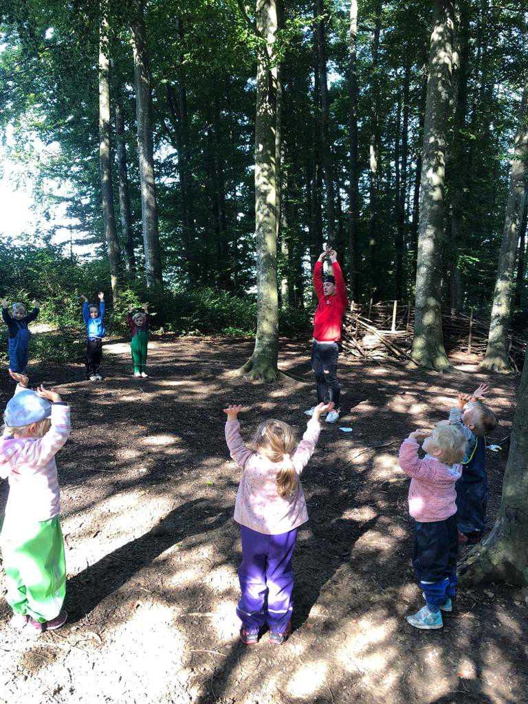Yoga im Wald